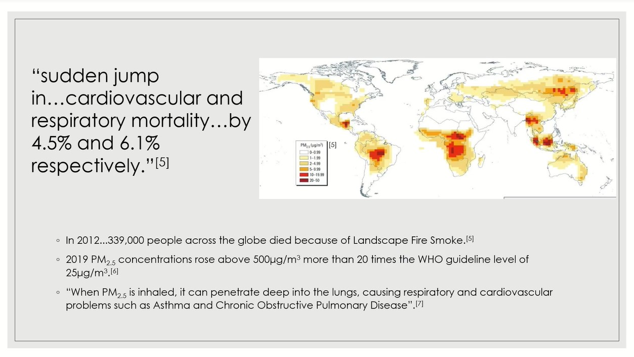 heat map of global smoke deaths due to landscape fires.