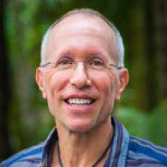 Professor Bill von Hippel