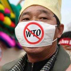 This is an image of a man wearing an anti WTO mask