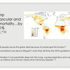 Global fine particulate matter levels and their impact on respiratory problems.